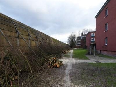 Die Mauer neben der A7 am Nienredder. Die Bäume wurden gefällt, um Platz für die Deckelbaustelle zu schaffen.
